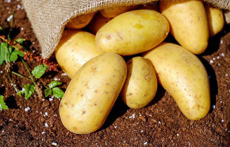 Aardappels en alles wat je daarover wilt weten - Handig artikel met achtergrond informatie over aardappels.