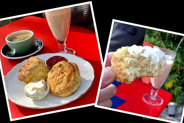 Coffeelicious scones