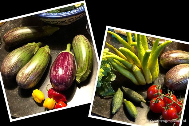 Organic Tour België met Love my Salad - Nieuwe groenten.