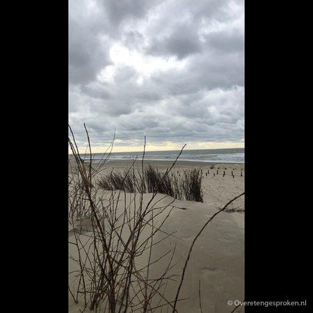 Texel - Duinen