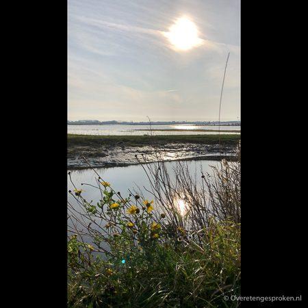 Texel - Walenburg