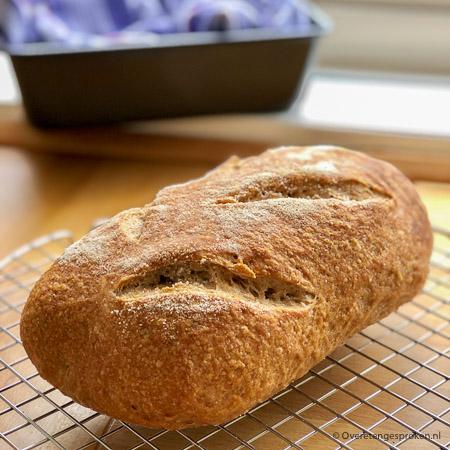 Brooddeeg laten rijzen: desem, gist en baksoda - In dit artikel lees je alles over de 3 verschillende rijsmiddelen om brooddeeg te laten rijzen.