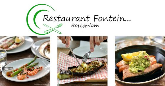 Fontein Rotterdam