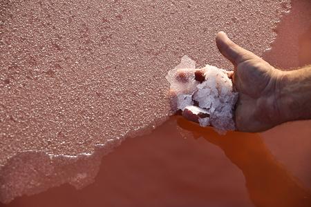 La Baleine Fleur de Sel - Frans zeezout uit de Camargue.
